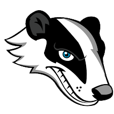 Badger State Screening Logo